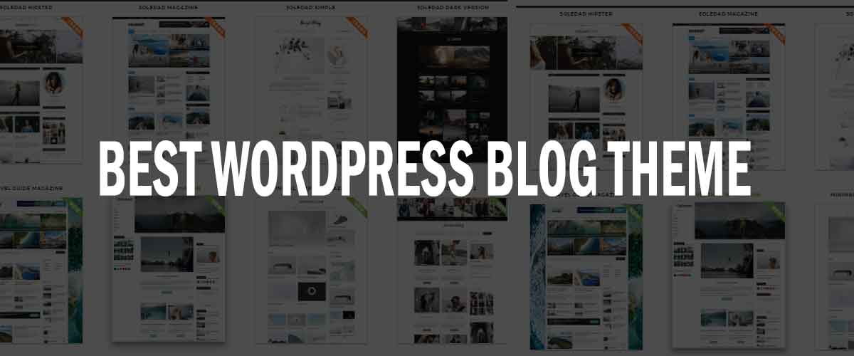 Best WordPress Blog Theme