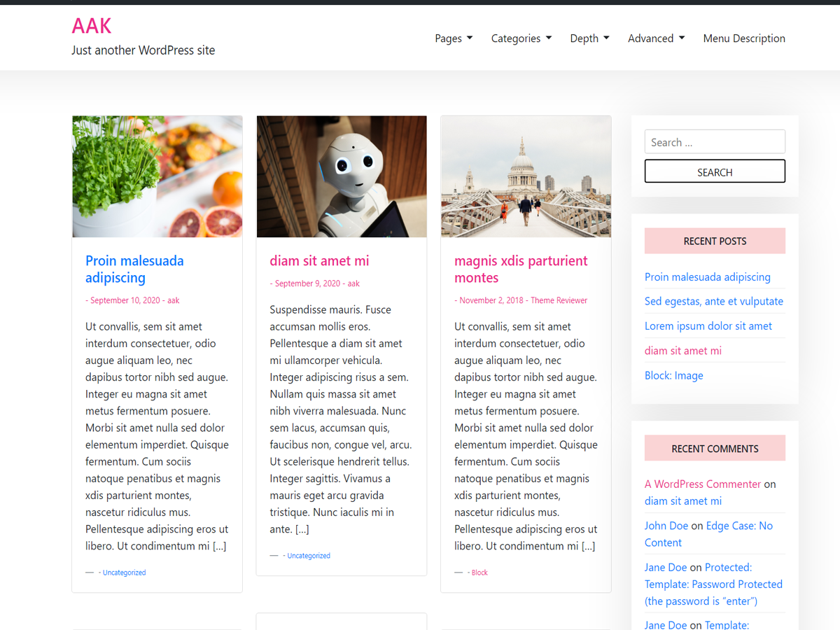 Aak WordPress Theme